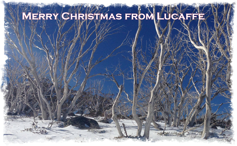 Lucaffe Christmas