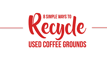 Recycle Coffee Infographic